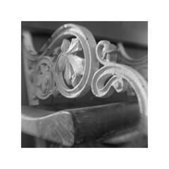 2019-11-15-0010_1 (glenn0004) Tags: box brownie hawkeye 120 film hp5 ilford ilfosol3 11 square vintage vintagelens flippedlens bw mono blackandwhite scan canoscan 9000f blackpool winter seaside labbox
