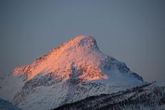 BA0I0157 (Clare Forster) Tags: tromso norway arctic winter november 2019 aurora