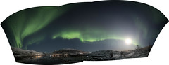 BA0I0554-Pano (Clare Forster) Tags: tromso norway arctic winter november 2019 aurora aurorahunting northern lights