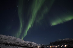 BA0I0492 (Clare Forster) Tags: tromso norway arctic winter november 2019 aurora aurorahunting northern lights