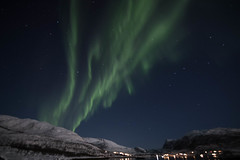 BA0I0480 (Clare Forster) Tags: tromso norway arctic winter november 2019 aurora aurorahunting northern lights