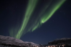BA0I0466 (Clare Forster) Tags: tromso norway arctic winter november 2019 aurora aurorahunting northern lights