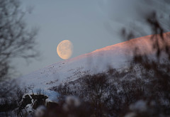 BA0I0104 (Clare Forster) Tags: tromso norway arctic winter november 2019 aurora