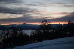 BA0I9861 (Clare Forster) Tags: tromso norway arctic winter november 2019 aurora
