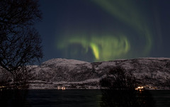 BA0I9696 (Clare Forster) Tags: tromso norway arctic winter november 2019 aurora aurorahunting northern lights