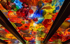 Chihuly Garden and Glass - Seattle, WA (Bela Lindtner) Tags: seattle washington unitedstatesofamerica lindtnerbéla belalindtner nikon d7100 nikond7100 nikkor 1020mm nikkor1020mm nikon1020mm indoor inside colours art glass chihulygardenandglass usa roof