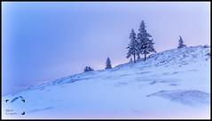 L'hiver arrive (reko22) Tags: fabuleuse