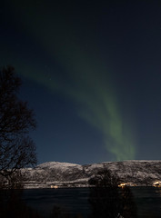 BA0I9617 (Clare Forster) Tags: tromso norway arctic winter november 2019 aurora aurorahunting northern lights