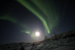 BA0I0527 (Clare Forster) Tags: tromso norway arctic winter november 2019 aurora aurorahunting northern lights