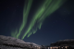 BA0I0470 (Clare Forster) Tags: tromso norway arctic winter november 2019 aurora aurorahunting northern lights