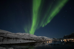 BA0I0465 (Clare Forster) Tags: tromso norway arctic winter november 2019 aurora aurorahunting northern lights