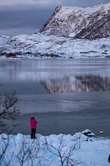 BA0I9898 (Clare Forster) Tags: tromso norway arctic winter november 2019 aurora