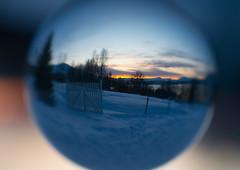 BA0I9867 (Clare Forster) Tags: tromso norway arctic winter november 2019 aurora