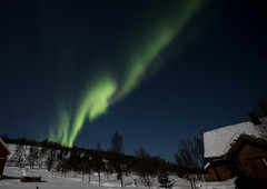 BA0I9726 (Clare Forster) Tags: tromso norway arctic winter november 2019 aurora aurorahunting northern lights