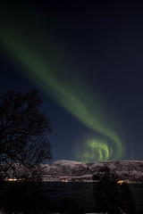 BA0I9665 (Clare Forster) Tags: tromso norway arctic winter november 2019 aurora aurorahunting northern lights