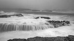 Foggy morning (j1985w) Tags: california pointarena ocean waves rocks water longexposure sky fog blackandwhite seaweed
