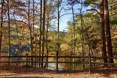 The Colors of Autumn. Helen, Ga (Mario & Debbie) Tags: leafs scenic scene landscape splendor radiant fallcolors autumncolors autumn georgia helen parks statepark unicoi