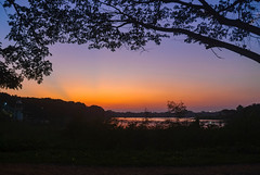 The Last Rays of Sun (Bhuvan N) Tags: mysore mysuru travel kukkarahallilake lake nature naturephotography natur natura naturaleza india karnataka evening orange sun sunlight light outside trees sky blue cielo ciel colours colors