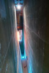 Douve protégeant la salle des coffres (Mhln) Tags: hôtel gaillard banque france cité économie citéco paris musée expo banquedefrance renaissance style