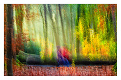 the light (1 of 1)-2 (ianmiddleton1) Tags: hss sliderssunday icm movement autumn sunshine fall woodland