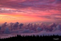 Hiking At 10023 Feet (mikederrico69) Tags: panaramic colorful sunset volcano view maui hawaii mountains mountain meditation island islands