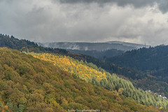 Neckar Valley Forest in Autumn 2019 IV (boettcher.photography) Tags: sashahasha boettcherphotos boettcherphotography germany deutschland herbst autumn fall neckargemünd neckartal neckarvalley neckarsteinach hessen kreisbergstrase landschaft landscape natur nature kurpfalz neckarsteig forest wald sky himmel clouds wolken cloudporn badenwürttemberg rheinneckarkreis
