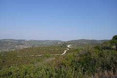 P1040761 (jasonpittock) Tags: israel telaviv jersualem