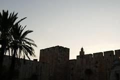 P1040645 (jasonpittock) Tags: israel telaviv jersualem
