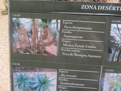 Plant information, Detail (d.kevan) Tags: plants arganzuelahothouse madrid zonadesértica1 description photos origin species commonname family