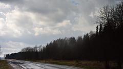 Noon. Rain and fog. (anytime-anywhere) Tags: rain fog april spring 2018 nikon road