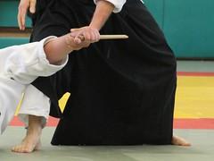 IMG_4285 (ls.aikido) Tags: aïkidohautrhin aïkido acspcm alsace