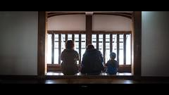 _DSC6140 (kblover24) Tags: sony a7r mk3 a7r3 a7riii riii fe f14 35 35mm za f14za 名古屋 nagoya 犬山城
