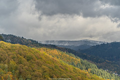 Neckar Valley Forest in Autumn 2019 III (boettcher.photography) Tags: sashahasha boettcherphotos boettcherphotography germany deutschland herbst autumn fall neckargemünd neckartal neckarvalley neckarsteinach hessen kreisbergstrase landschaft landscape natur nature kurpfalz neckarsteig forest wald sky himmel clouds wolken cloudporn badenwürttemberg rheinneckarkreis