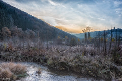 17112019-DSC_0006 (vidjanma) Tags: houffalize ourthe automne givre matin rivière vallée