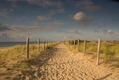 der Weg (K-H Morell) Tags: egmondaanzee nordholland netherland