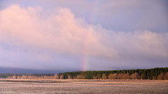 Morning rainbow. (anytime-anywhere) Tags: spring april 2018 rainbow clouds nikon field