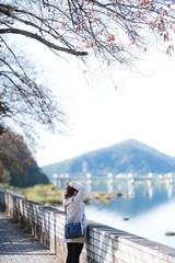 _DSC5960 (kblover24) Tags: sony a7r mk3 a7r3 a7riii riii fe 85 85mm f14 f14gm gm 名古屋 nagoya 犬山城