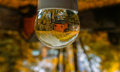 Autumn trough a crystal ball (@magda627) Tags: glass coth5 composition color art nature sony fall flickr playing garden trees edit anteketborkacom crystalballphotography autumn sun bokeh evening outdoor