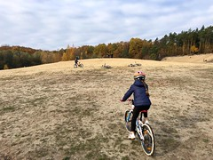 BikingKids-Mountain-Bike-Kurse-BikeSportBerlin-de-IMG-20181104-WA0005