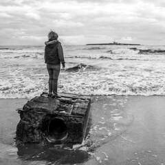 Island Life (Hutchy99) Tags: sea beach coast coquetisland england uk northsea