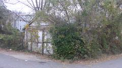 Garage Bladensburg & Dougas NE (waroncars) Tags: garage ivy overgrown dc nedc ward5dc gatewaynedc