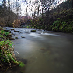 Water (cool_pics_76) Tags: wasser water landscape landschaft bach sonya600 samyang1220 langzeitbelichtung