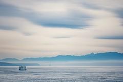 Go By Ferry (Los Paseos) Tags: washington salishsea pugetsound washingtonstateferry olympicpeninsula