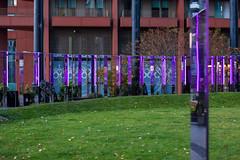 Lights and mirrors (tommyajohansson) Tags: london kingscross granarysquare regentscanal november winter tommyajohansson geotagged