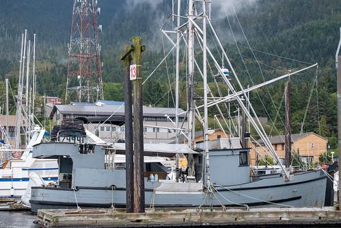 Alaska Cruise - September 2019 (9857)