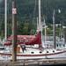 Alaska Cruise - September 2019 (9868)