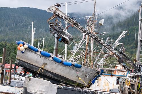 Alaska Cruise - September 2019 (9890)