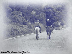 128 Envelhecidas Delfim Moreira MG Brasi2008 A640 Nov19 (3) (Vivaldo Armelin Jr.) Tags: delfim moreira mg brasil ruas stritt