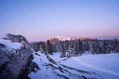 Winter in Jura (chriscom) Tags: switzerland jura winter landscape mountains peaks nature sky snow trees