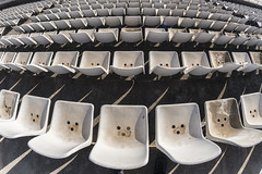 :0 (Santini1972) Tags: chairs pattern faces texture barcelona nikond7500 fisheye abstract